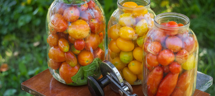 Three Glass Containers Filled with Tomatoes