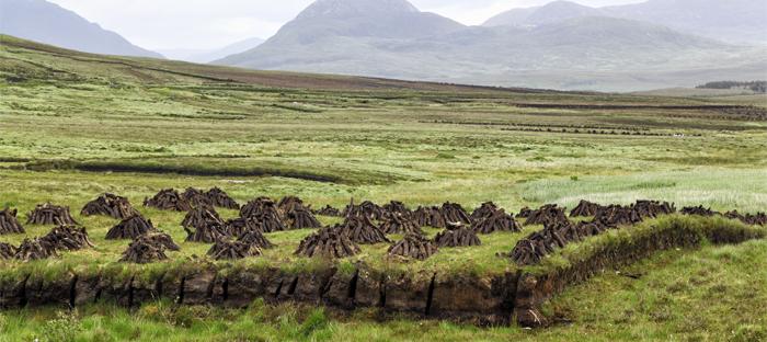 Peatland and Hills