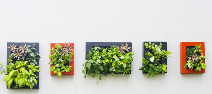 unique wall planters
