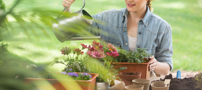 person watering container gardens