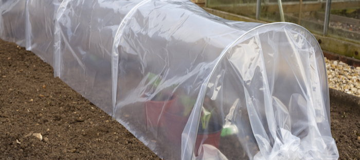 hoop tunnel protecting plants