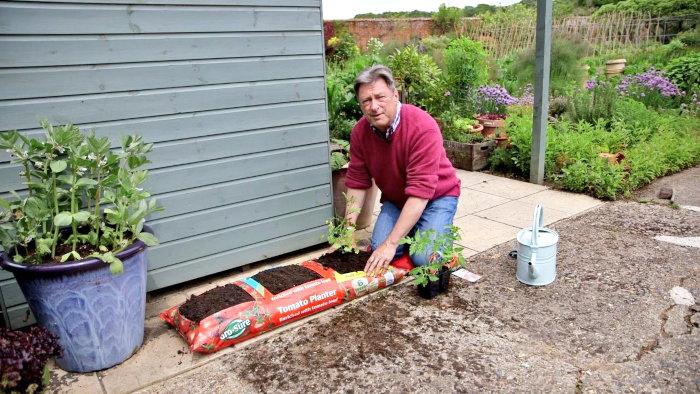man planting in growing bags
