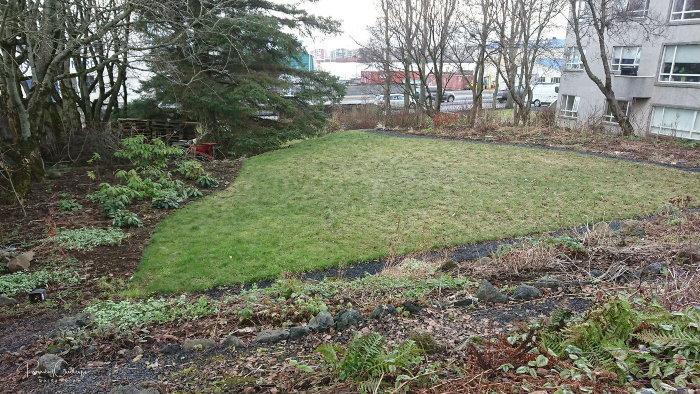an icelandic border garden