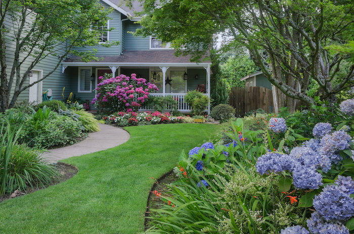 a beautiful front lawn