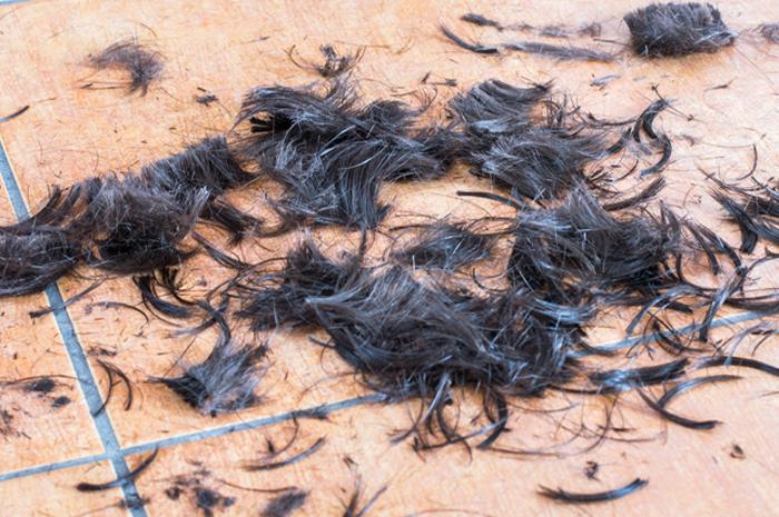 Hair clippings on tile floor