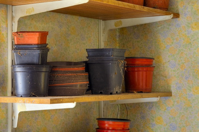 plastic containers are always best for cat-friendly gardens