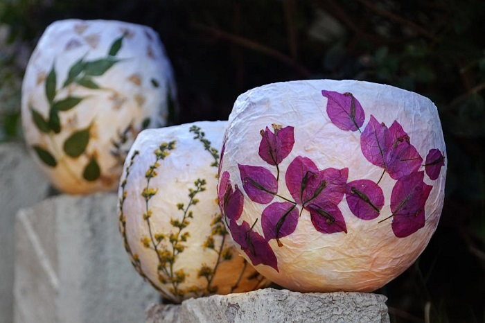 10 unusual uses of pressed flowers in the home daves garden waxed paper lanterns pressed flower lantern mightylinksfo