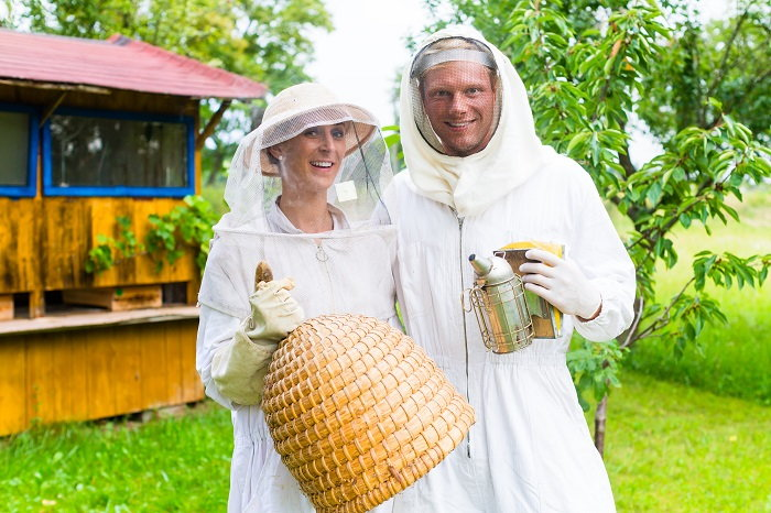 beekeeping with smoker and artificial hive