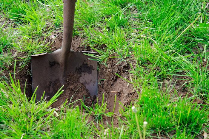 digging a hole for a bog garden