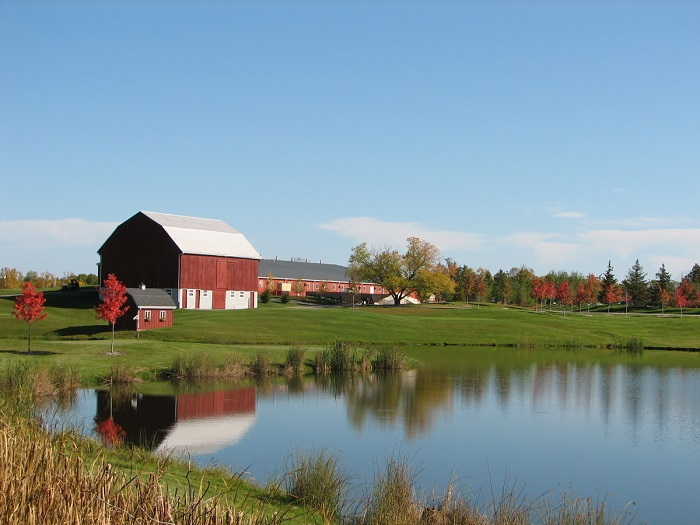 red barn by a pond