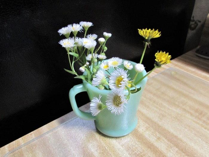 dandelions and fleabane bouquet