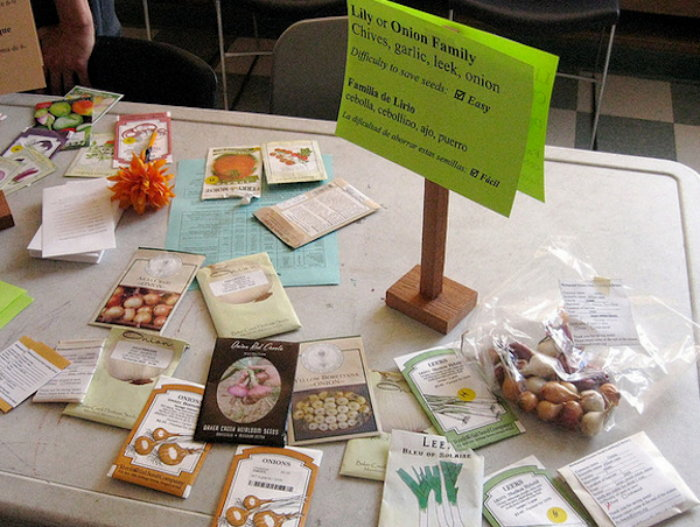 seed packets on a table