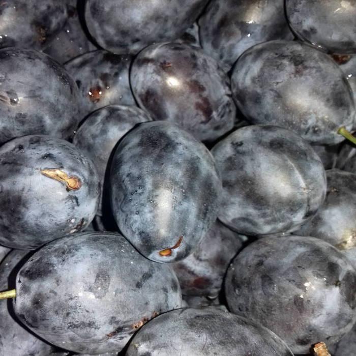 Fresh plums, close-up