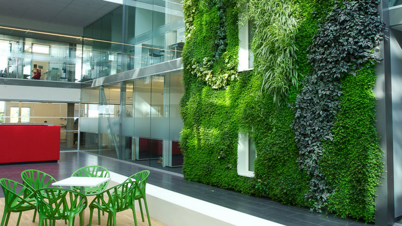 living green wall inside a building