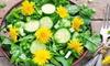 dandelion salad with cucumbers
