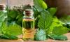 lemon balm and a jar of essential oil