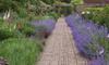 A garden pathway.