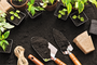 Gardening Tips and Tricks for the Green Thumb Challenged
