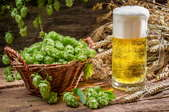 Basket of hops next to a glass of beer