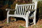 An unfinished, outdoor bench with mildew growth on the wood.