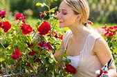 woman pruning roses