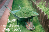 9 Essential Tools for Your Best Lawn