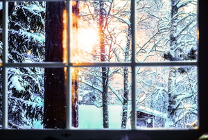 A window with panes looking out at a snow covered forest.