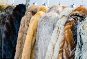 multiple fur coats hanging