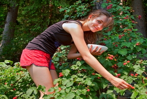 A young woman picking raspberries.