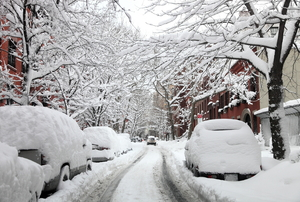 A blanket of snow covering trees and cars.