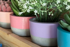 cement planters with colorful paint and small plants