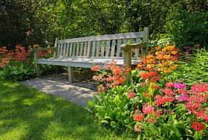 Long bench surrounded by flowers