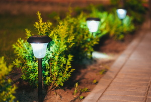 Solar lights on a garden pathway.