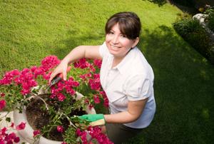 woman handling flowers in a pot