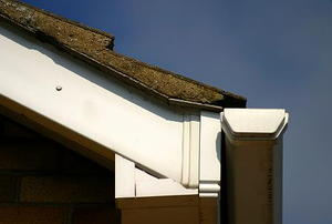 The corner of a roof, with shingles, gutter, and eaves visible.