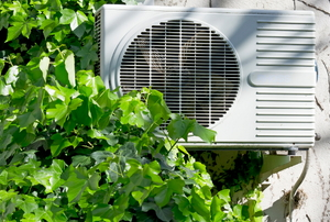 An air conditioning unit surrounded by ivy.
