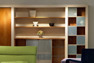 Nice living room with couch and shelving