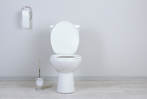 white toilet, toilet paper, and plunger in bathroom
