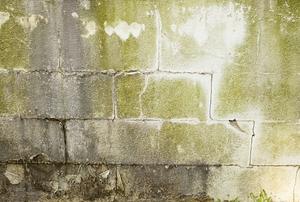 crumbled basement wall