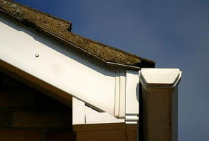 A corner of a roof, with shingles, gutter, and eaves in view.