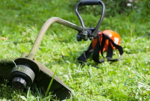 a weed whacker on a healthy lawn