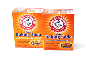 A couple boxes of baking soda.