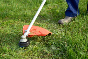 A weed eater being used to trim a lawn.