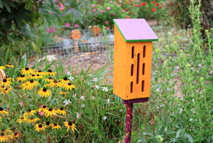 A yellow butterfly box with a  light blue roof, located in a flower field