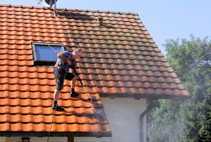 Man sprays a roof