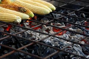 Grilling corn over a pit of hot coals.