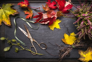 A bunch of fall leaves with a scissor and ribbon.