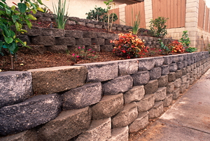 A retaining wall with flowers and plants.