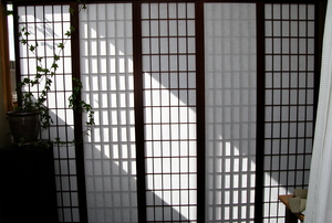 rice paper panels