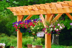 A wooden pergola with hanging flowerpots.